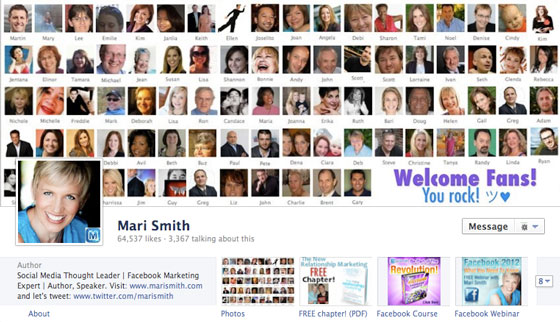 page-facebook-timeline-journal-mari-smith