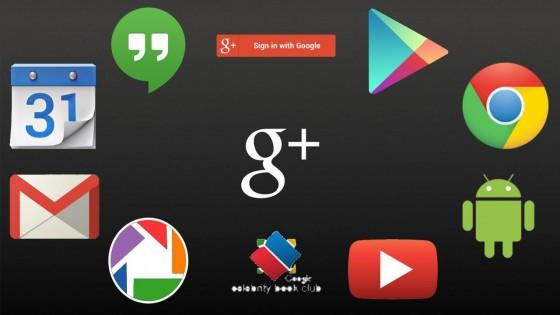 google-interconnexion-services