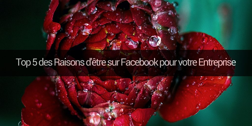 facebook-entreprises-pros