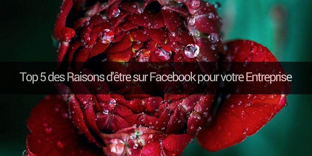 Top 5 des Raisons d'être sur Facebook pour votre Entreprise