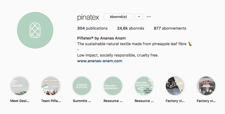 pinatex Instagram Stories Highlights a la une